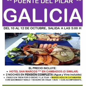 PUENTE GALICIA